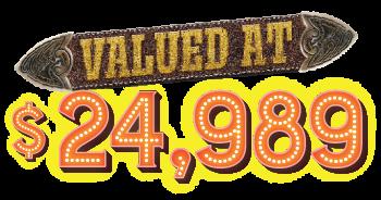 valued at $24,989
